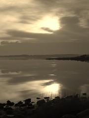 Sepia Morning (Little Chubby Panda) Tags: morning water sepia sunrise dawn coast shore langley langleyafb langleyairforcebase