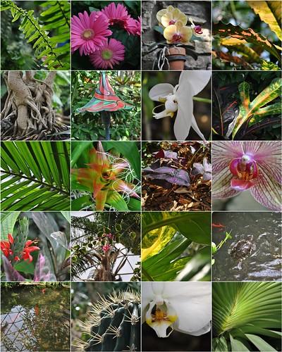2011 Botanical Center Mosaic