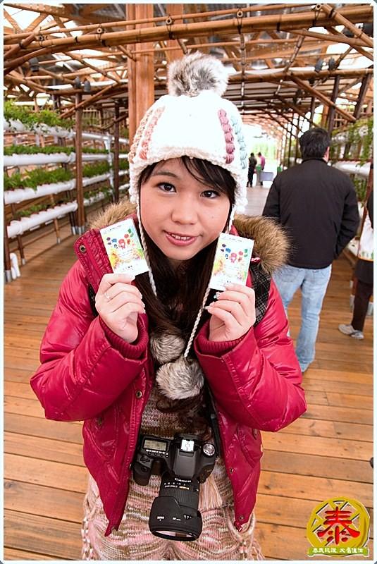 2011-01-01-花博01~新生公園+茶花殿 (3)