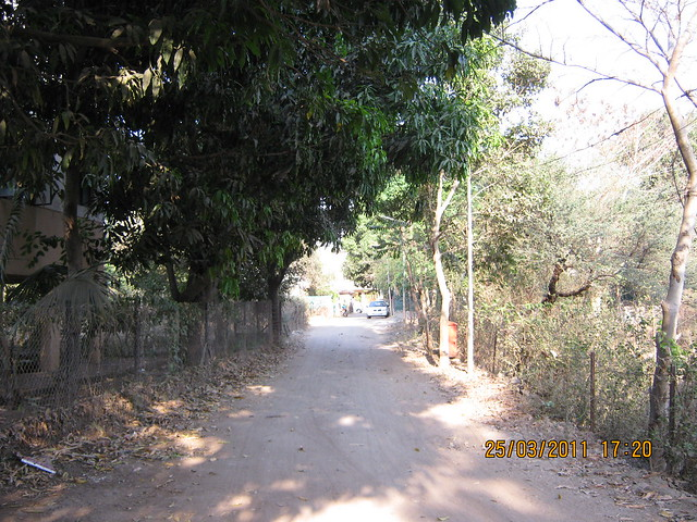 You have to take this lane in Prathamesh Park for DSK Gandhakosh Baner Pune