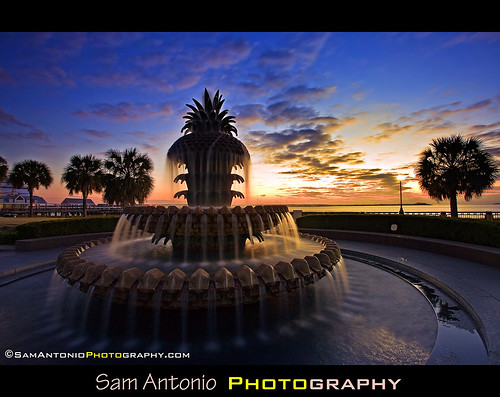 Having a Sweet Time at the Pineapple Fountain by Sam Antonio Photography