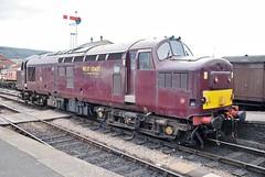 37 248 (hugh llewelyn) Tags: all transport class 37 types