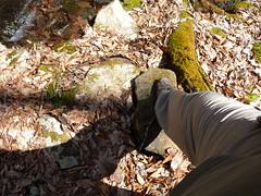 Don't step here! (Drayg0) Tags: feet wet water socks creek river shoes dry wetfeet geocachinghikingtrailtrektrekkeroutdoorswildernessforestwoodsmountainsvirginiasouthwestvirginiacampingblazemycologymushroomwildgrowthgpsadventureseekseeking