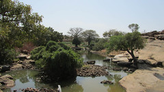 West Africa-2385