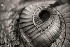 Analogue love by Praktica MTL3 (C O L O U R S O F D E C A Y) Tags: urbex urbanexploration abandoned abandonedplace stairs staircase analog analogue analoguelove praktica blackandwhite monochrome detail