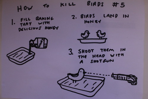 5546903479 03a5b6ac47 How to Kill Birds #5