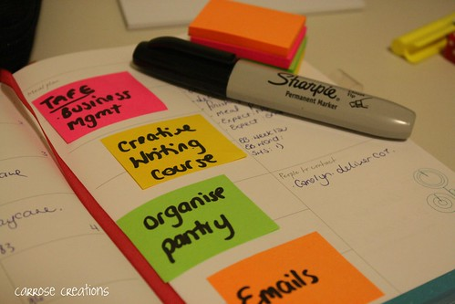 {365} 081 Organisation by car_rose21