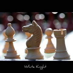 White Knight (John-Morgan) Tags: california game macro canon bokeh chess battle knight boardgame canon100mmf28macro rook bishop strategy whiteknight johnmorgan