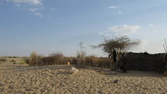 West Africa-2454