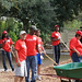 Cady-Way-Park-Playground-Build-Winter-Park-Florida-040