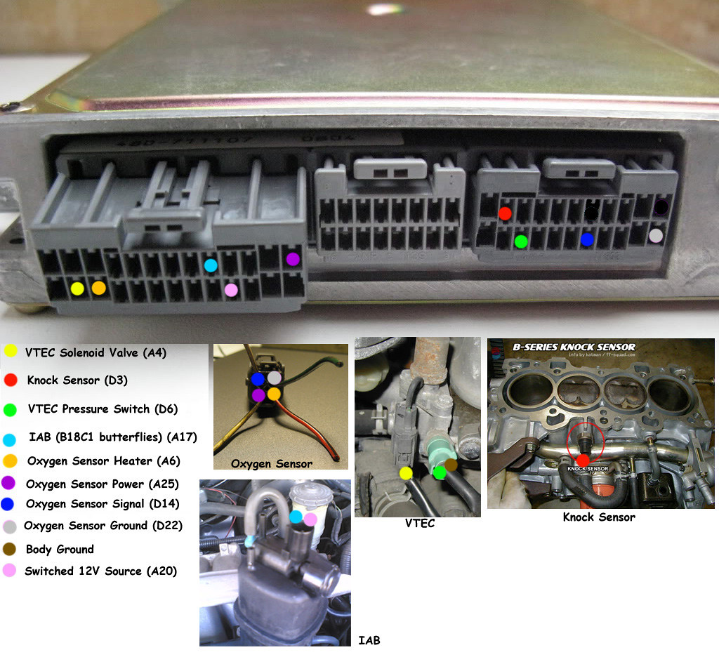 Obd1 Vtec Wiring Diagram Schematics D16y7 Harness Pics Of Completed P72 Ecu Honda Tech Plug