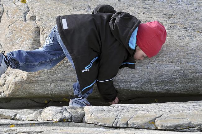 nilse på klipporna