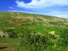 KURDISTAN (Kurdistan Photo كوردستان) Tags: life travel family music food news art film sports fashion writing photography video poetry technology personal events politics entertainment software local videos reviews kurdistan anfal کوردستان kürdistan الأنفال‎