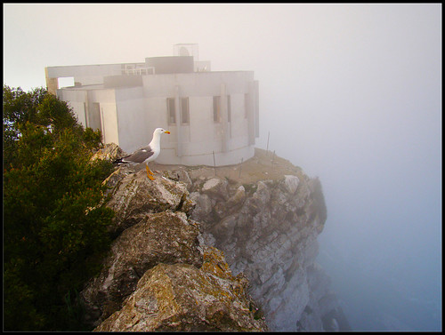 Bunkers Gibraltar (1)