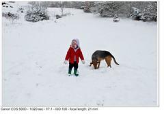 2010_01_05_1378-2 (John P Norton) Tags: f71 aperturepriority 1320sec focallength21mm canoneos500d efs1855mmf3556is copyright2010johnnorton