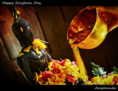Happy Songkran Day 2011 /  (AmpamukA) Tags: new travel flower water dark shower happy pagoda sand bath stream day buddha year culture petal thai tradition buddism sankranti songkran 2011   2554     sankhara  ampamuka