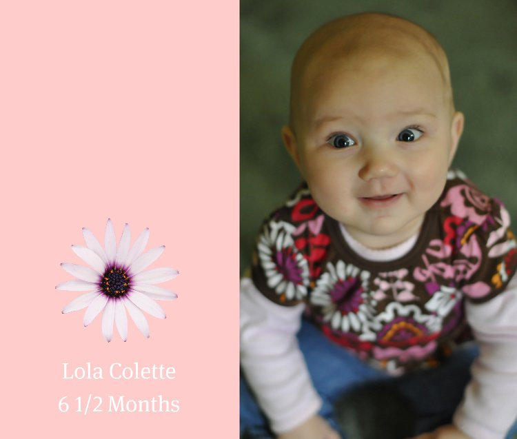 Lola 6.5 months