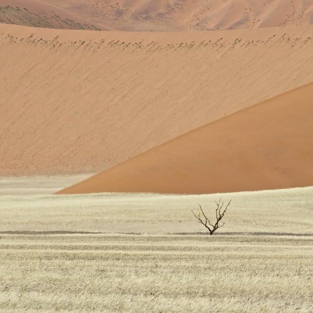 Heat haze, dune 45 - Sossusvlei, Namibia