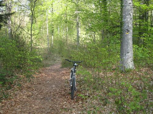 Ain Biking