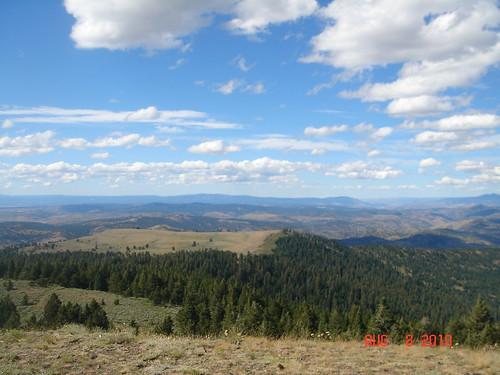 NM mountains