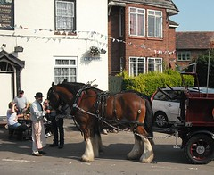 Hook Norton Dray