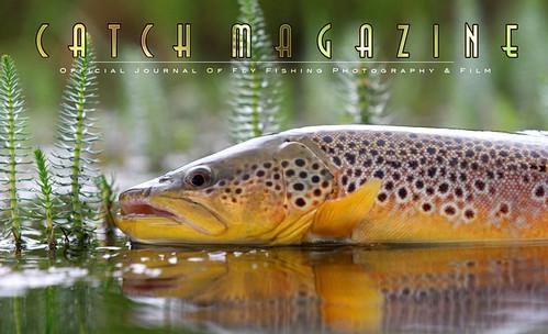 Cath Magazine