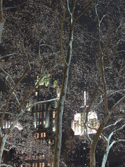Empire through trees in Bryant Park