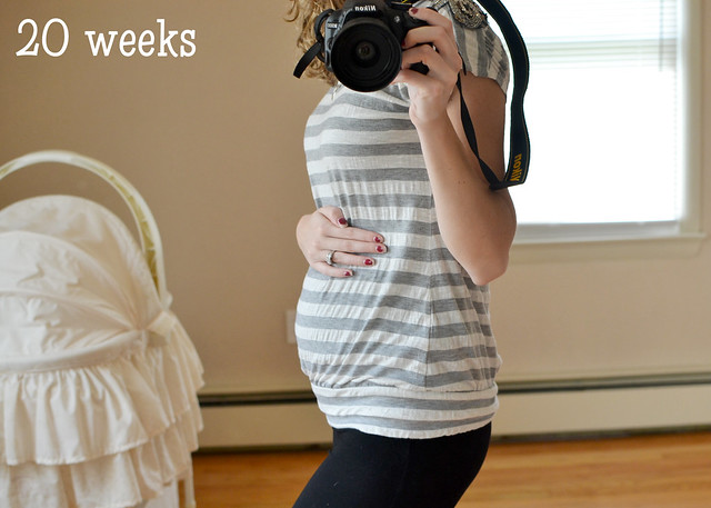 20 weeks (6)