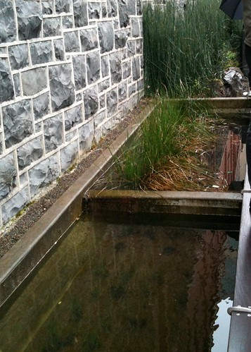 Eco Stormwater Ponds