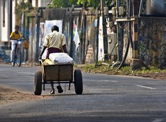 The day begins (bag_lady) Tags: street morning india candid streetphotography kerala indians cart pulling fortkochi earthasia unseen~india unseen~asia