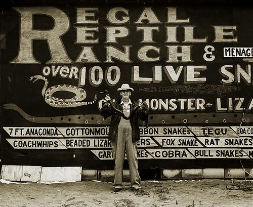 Steve Fitch, Snakepit Operator, Highway 66, Sayre, Oklahoma, 1972