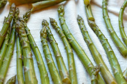 Asparagus Spears Drying by Eve Fox, Garden of Eating blog, copyright 2011