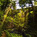 Millers Dale_270807_0013