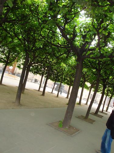 Brühl's Terrace_14