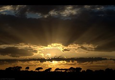 SunRays (Le***Refs *PHOTOGRAPHIE*) Tags: sunset sky sun france nature clouds sunrise 50mm nikon ciel rays sunrays nuages gard coucherdesoleil rayons camargue southfrance stgilles d90 lerefs