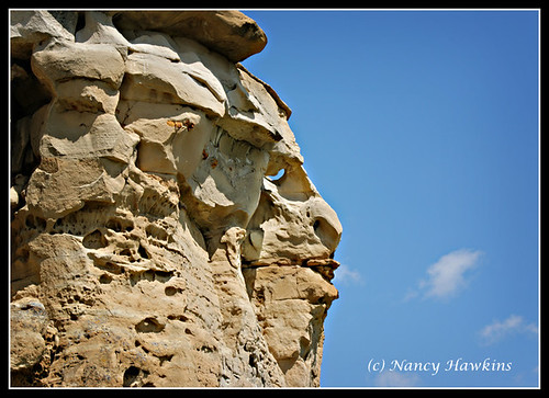 Face That Nature Carved by Nancy Hawkins