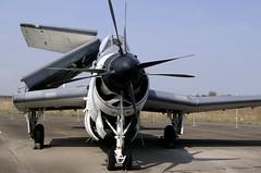 Fairey Gannet AS 4 n F9391 ~ UA+106 (Aero.passion DBC-1) Tags: luftwaffen museum gatow berlin dbc1 aeropassion aviation avion aircraft plane muse musedelair airmuseum biscove david fairey gannet ua106