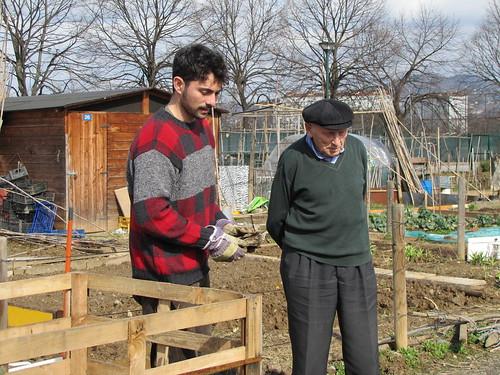 compostiere agli orti regolamentati 8