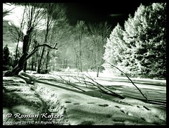 LR2-1219883 (FotoManiacNYC) Tags: winter snow ny cold ir zima snieg
