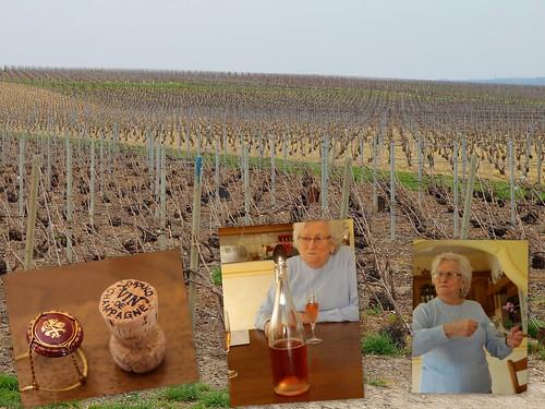 2011.4.5法国香槟区,奶奶再介绍香槟,偶土了