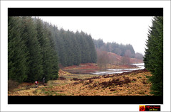 wk12-2011 ~ Mentieth Hills MTB Ride (moi_images) Tags: trees path mtb loch trossachs picaweek aberfoyle 2011 wk12 menteiths