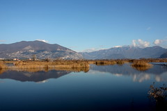 Reflections (annalisabianchetti) Tags: reflections lakeiseo