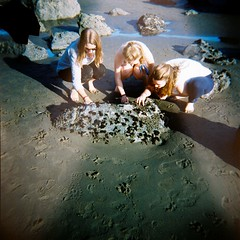 Down by the Tidepools (emibell) Tags: color holga marincounty mussels tidepools muirbeach colorflash cfp colorfilm 2011 suninjanuary colorfilmphotography lisajenkins ceannavangelder emibell juliannaobrien