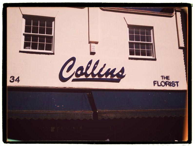 Collins faversham