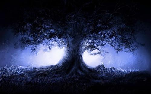 [フリー画像] グラフィックス, イラスト, 風景(イラスト), 樹木, 201104262300