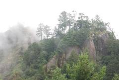 嘉義塔山步道,雲山美樹如黃山,葉品妤攝。