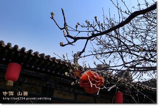 20110411_ChinaShanXi_3035 f