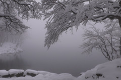 the sound of silence (lepustimidus) Tags: lake snow lago neve montagna lagosanto nountain appenninoparmense