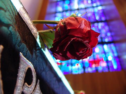 Rós á altari Neskirkju föstudaginn langa