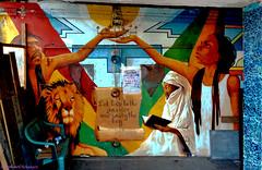 Let Love be the answer and unity the key (Amsterdam Today) Tags: africa street red urban black green love amsterdam train gold key iron paradise colours grafitti god spirit unity © lion bob smoking holy peter seven jamaica be locks zion ethiopia judah spiritual samson reggae marley mokum sufi let babylon dreadlock cannabis joint tosh morpheus answer emperor majesty ascetic rastafari jah ndsm ideology roken haile proclamation rastas dagga selassie stadsarchief incarnation wiet scheepswerf jata amharic sadhus dreaded droogdok yahshua schaagen immortalists qalandars